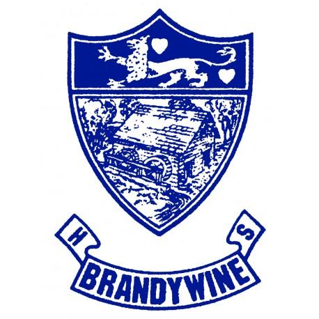 Brandywine High School Graduation 2019